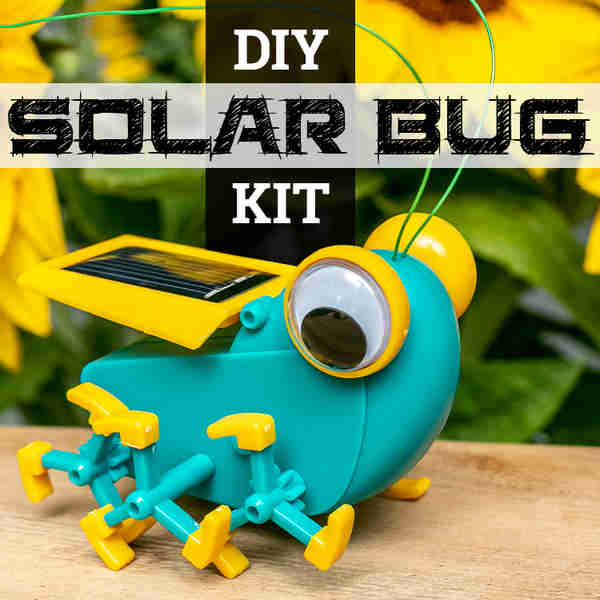 Review: Solar Bug by TechBrands